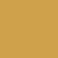 barevné provedení Sango_R zlatá